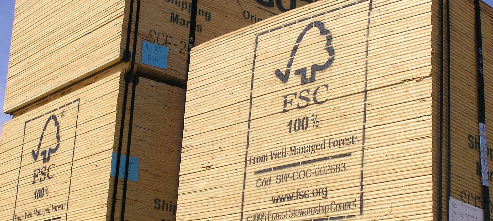 fsc-logo-sustainable-forestry